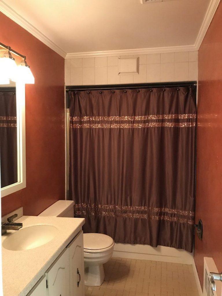 before-bathroom-remodel-2
