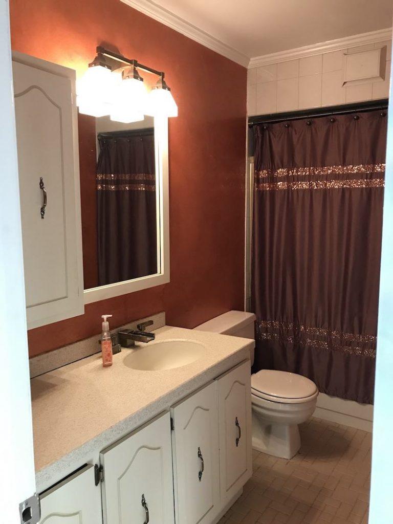 before-bathroom-remodel