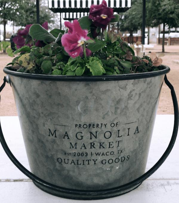 Magnolia Market Experience in Waco, TX